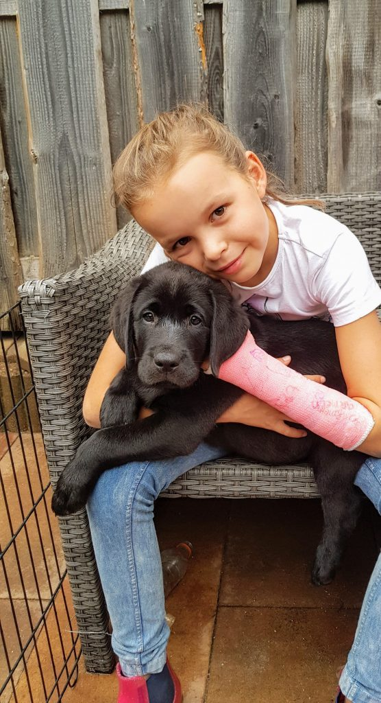 Helpen met puppies brengt risicos