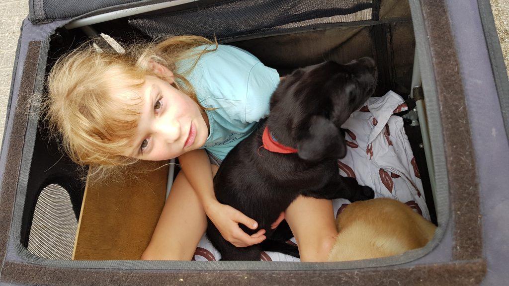 Met twee pups naar het dorp